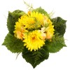 Gerbera-Hydrangea Bouquet - Yellow/Green/Darkgreen/Light Yellow